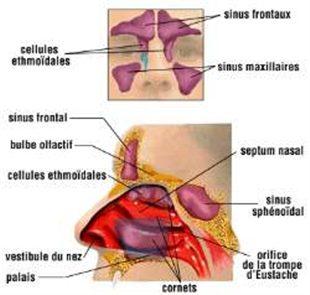 rencontre gay seropositif belgique Mamoudzou