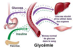Glycémie