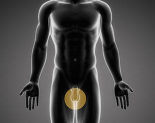 Douleur aux testicules