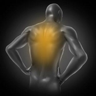 Douleurs dorsales (dorsalgies)