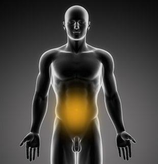 Douleur abdominale : généralités