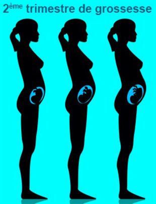 Echographie 4 me semaine de grossesse - Monbebecom