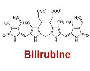 Bilirubinémie