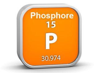 Phosphorémie