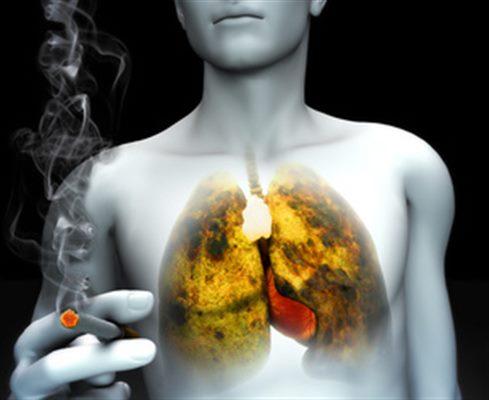 Loi sur le tabac : des réponses à vos questions : faq santé - docteurclic.com