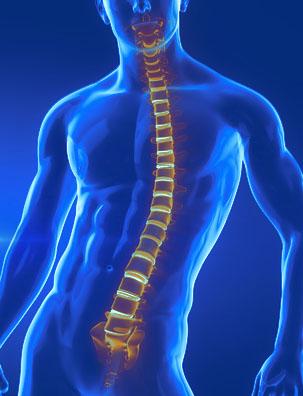 Entorse vertébrale : symptômes, traitement, définition..