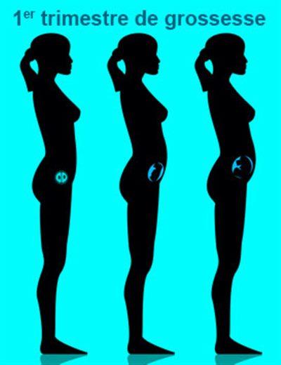 Grossesse: 7ème semaine d'aménorrhée : symptômes, traitement ...