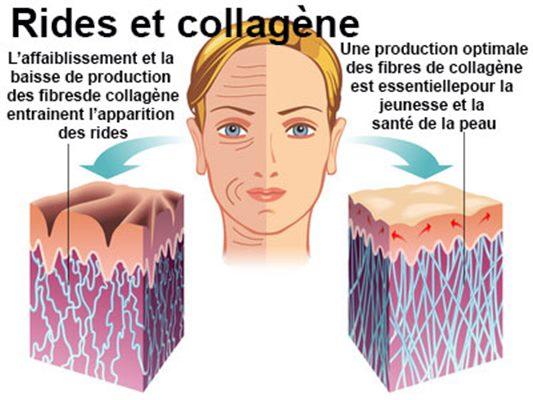 Collagène : définition, technique - docteurclic.com